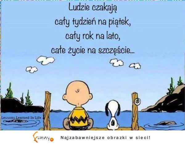 https://www.funny.pl/images/items/e99298b28ed320343949b7631bebe7e5.jpg