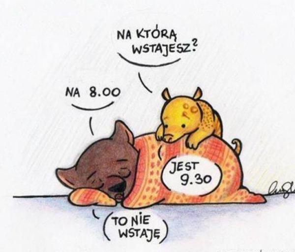 https://www.funny.pl/images/items_facebook/080e0da3fda011262133d385fb554151.jpg