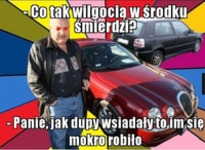 Co to za wilgoć